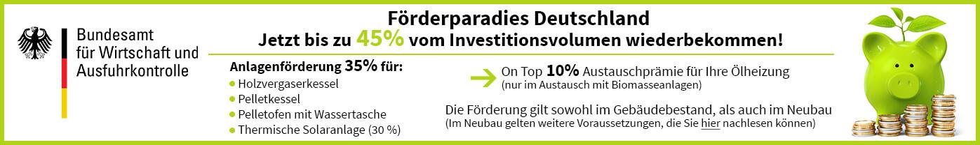 Nutzen auch Sie die grüne Energie! Die BAFA beteiligt sich mit bis zu 2000 Euro!