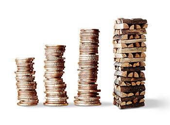 Was kostet Brennholz? Kaminholz-Preise im Fokus