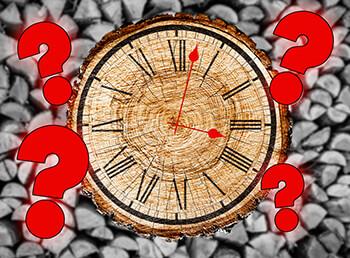 Wie lange sollte Brennholz trocknen?