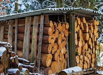 Sollte man Brennholz abdecken oder nicht?